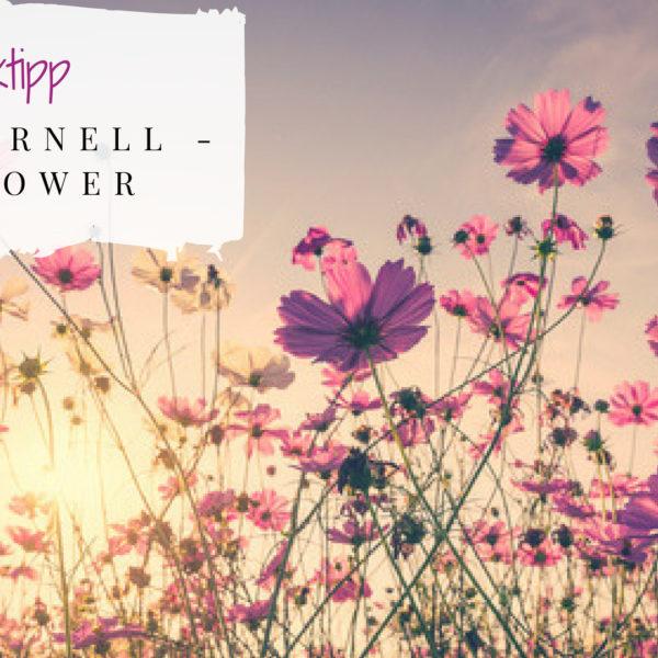 Chris Cornell Musiktipp Titelbild