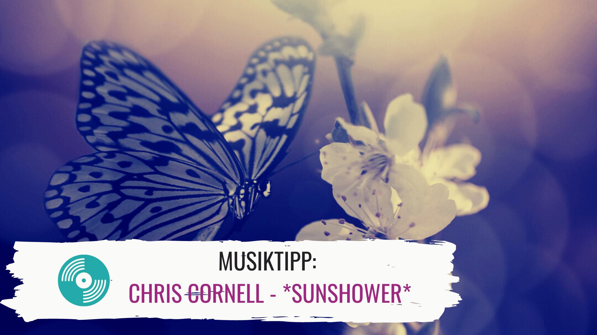 Musiktipp: Chris Cornell – *Sunshower*