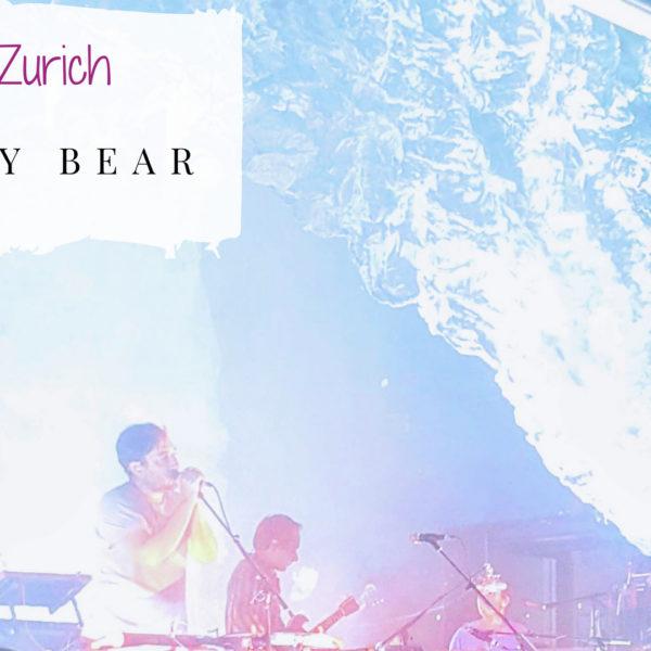 Konzertbericht Grizzly Bear