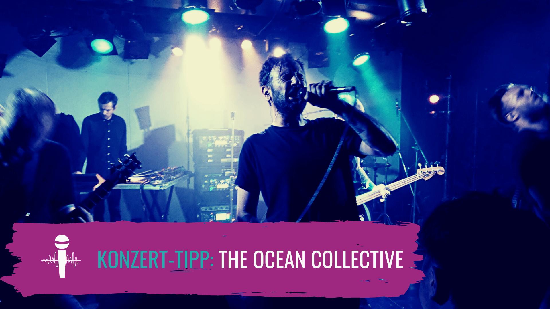 The Ocean Collective Live-Stream @ Pier2 Bremen